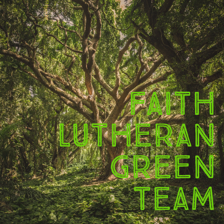 Faith Lutheran Green Team