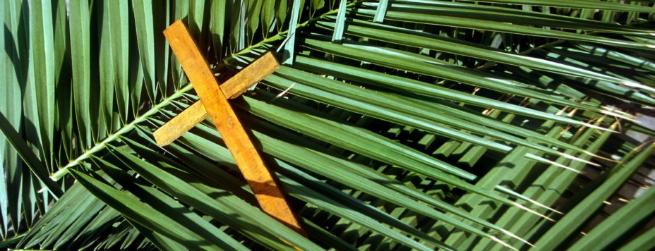 This is the gospel from the 2017 Palm Sunday Service at Faith Lutheran Church in Okemos, Michigan.