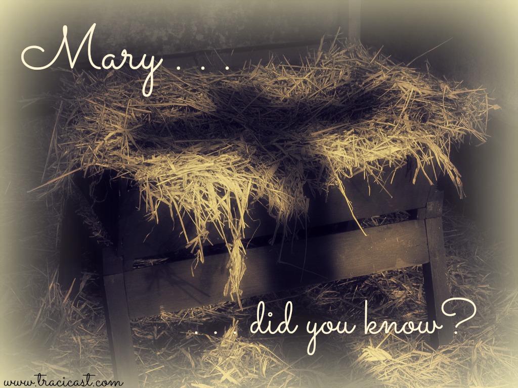 Special Music - Mary Did You Know - Faith Lutheran Church Okemos